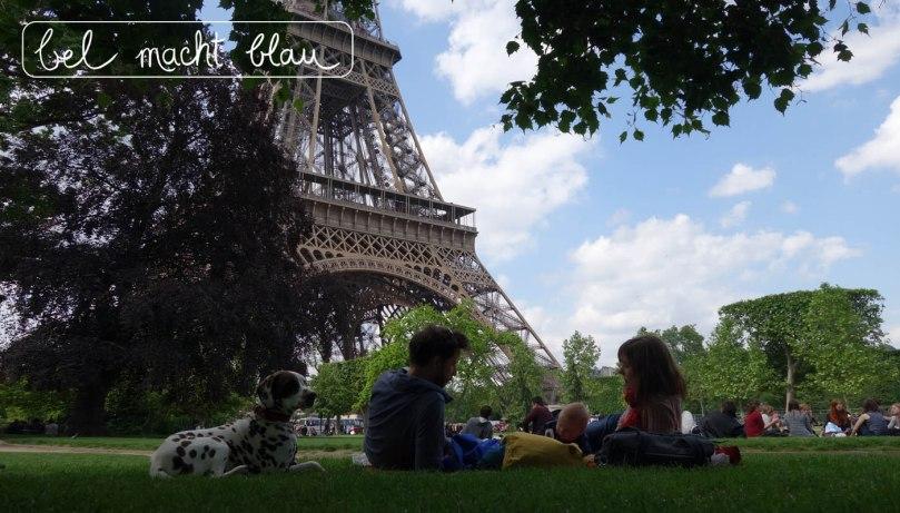 Reisen mit Baby - Picknick vorm Eiffelturm